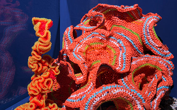 Coral made by crocheting.